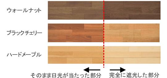 日光等の光による色の変化の比較